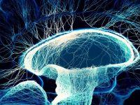 Ce este, de fapt, conștiința umană. Teoria care descifrează unul dintre cele mai mari mistere ale omenirii