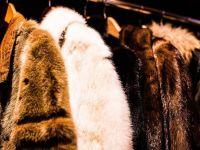 (P) Cum porți haina din blană sintetică