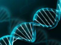 Injectarea ADN-ului modificat, calea spre vindecarea bolilor ereditare