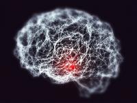 Poate coronavirusul să provoace leziuni cerebrale? Răspunsul oamenilor de știință