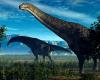 Paleontologii au găsit rămășițele celui mai mare animal care a existat vreodată pe Terra