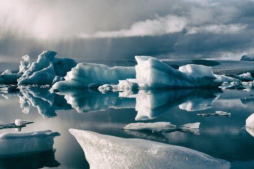 Specii necunoscute, descoperite sub gheața din Antarctica. Biologii spun că nu ar trebui să existe