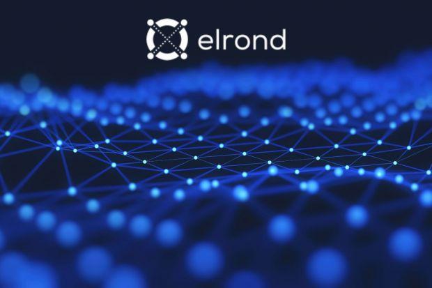 Ce este Elrond, cel mai nou unicorn românesc, o companie care vrea să cucerească lumea