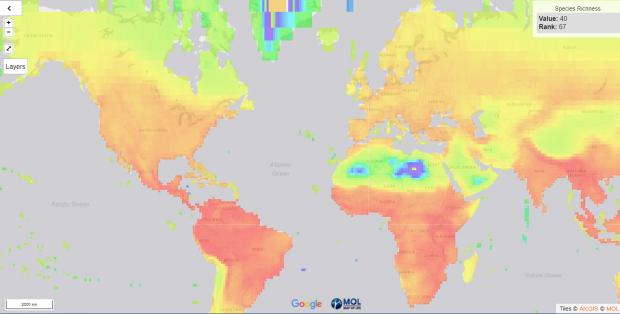 Noua bdquo;hartă a vieții  arată unde trăiesc animalele încă necunoscute pământenilor