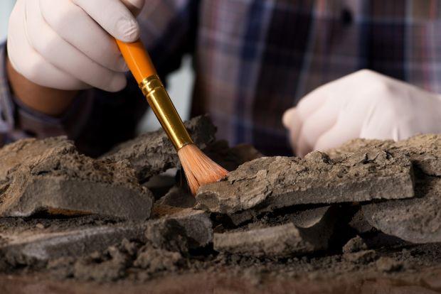 Premieră istorică. Arheologilor nu le-a venit să creadă ce au găsit atunci când efectuau un studiu de rutină