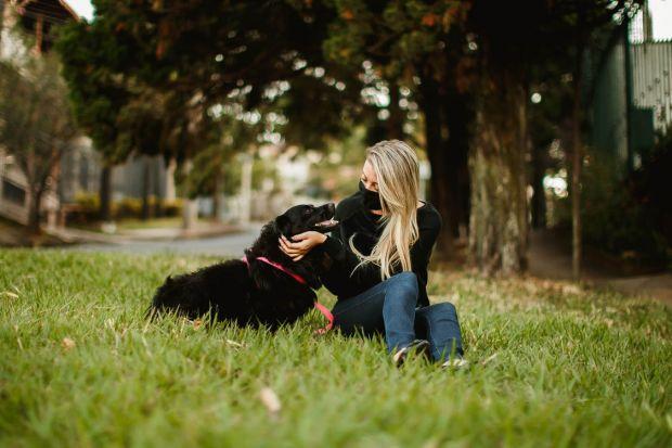 Cercetătorii au descoperit un nou tip de coronavirus, care se transmite de la câine la om