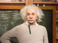 Scrisoarea lui Albert Einstein care prezice una dintre cele mai mari curiozități legată de lumea animală. A fost descoperită după mai bine de 70 de ani