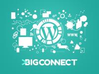 (P) De ce să alegi un plan de găzduire VPS pentru site-ul tău WordPress?