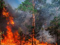 ONU, ultimatum pentru omenire: efectele schimbărilor climatice sunt bdquo;fără precedent  și bdquo;ireversibile