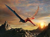 Dragonii au existat cu adevărat. O specie foarte asemănătoare domina Australia în urmă cu milioane de ani